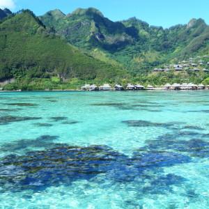 French Polynesia, Moorea, Radiate, Tahiti, Bora-Bora