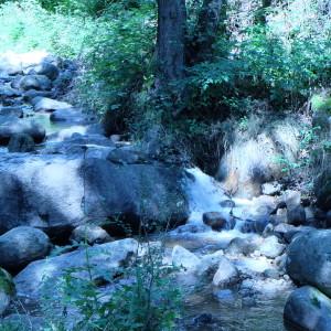 Staro Bardo path