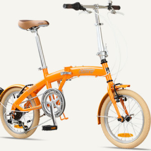tokyo citizen bike