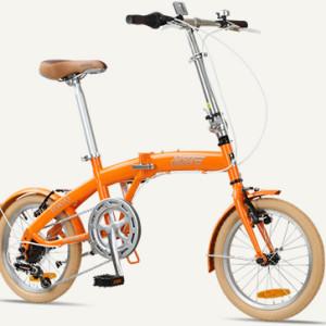 Citizen bike