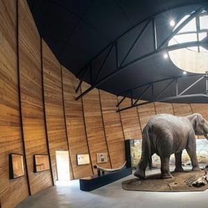 Dorkovo, Paleontological museum