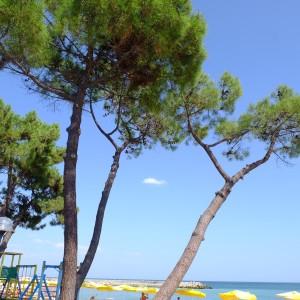 Riviera, Varna